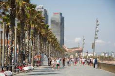 Barceloneta | bijzondere plaatsen