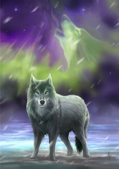 (Product Code: rAN59) Aura Wolf Card by Anne Stokes, Anne Stokes Eastern Promise Cards - EnchantedJewelry - 1