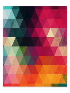 Many Colors by Terri Ellis (Canvas) by Kavka Designs at Gilt