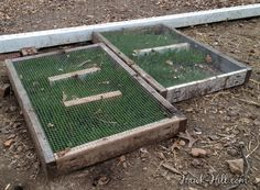 Build these Chicken Grazing Boxes and Grow Fresh Greens in your Chicken Run Year Round - Hawk Hill