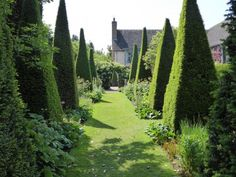 Manicured topiary - 14-foot-high yew pyramids at Wollerton Old Hall in Shropshire    © Gardenista