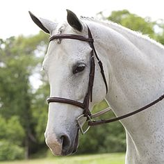 Plymouth Padded Fancy Stitch Bridle by SmartPak - this is the english bridle I want to replace my cheap one with the stiff reins (ick!)