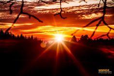 Photo Morning Sunrise by Reinhard Loher on Morning Sunrise, Northern Lights, Celestial, Sunset, Nature, Travel, Outdoor, Paisajes, Sunrises