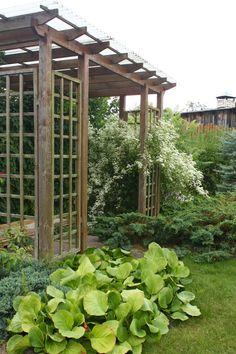 Как спланировать сад? Что поможет сберечь время, деньги и силы? (часть 3)