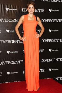 Shailene  Absolutely love this dress.the fitting is perfect.