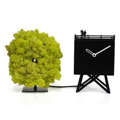 BIRDWATCHING CUCKOO CLOCK BY PROGETTI from Luxxdesign.com