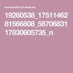 19260538_1751146281566808_5870683117830605735_n
