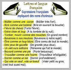 Expressions impliquant des noms d'animaux. French Language Lessons, French Language Learning, Learn A New Language, French Lessons, French Phrases, French Words, French Quotes, Ap French, Learn French