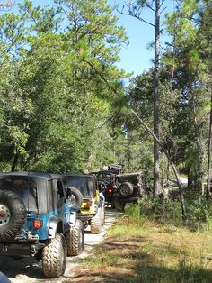 Jeeps, Mud, and Dirt Roads!