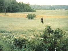 "Tarkovsky ""Mirror"" Paint Photography, Film Photography, Fleet Foxes, Waves After Waves, Film Aesthetic, Dark Matter, Polaroid, Perfect World, Film Stills"