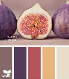 Bedroom colors.  The pinkish color on the walls, I already know of a bedding set in the yellow that will work, the cream color for trim/furniture, and the purple & brown for accents