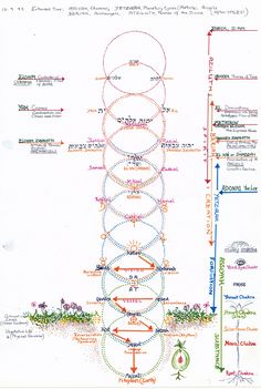 Jacobs Ladder, showing the realms of nature, astrology, archangels and Divine Names    ja/2001