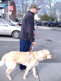 Veteran & service #dog #servicedog