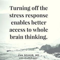 Turning off the stress response enables better access to whole brain thinking.  Dr. Eva Selhub