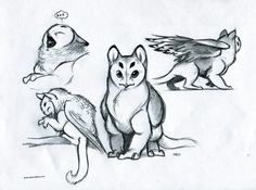 various poses