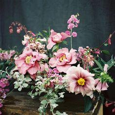 Peonies, foxglove, licorice vine, and wild sweet pea. film from this time last year. Blooming Flowers, Flower Images, Bride Bouquets, Peonies, Flower Arrangements, Beautiful Flowers, Vines, Wedding Flowers, Floral Wreath