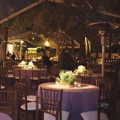 Houston wedding. Brooke Schwab Photography.