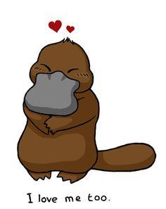 Love the platypus by tomatie.deviantart.com on @DeviantArt