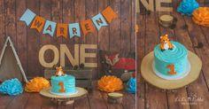 Cake Smash, Boy, Fox, Wood, First Birthday, Okinawa, Japan, La La Noble Photography