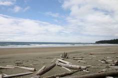 If you luv beaches Beach is a must. China Beach, Park Trails, Vancouver Island, Canada Travel, British Columbia, Beaches, Adventure, Outdoor, Outdoors