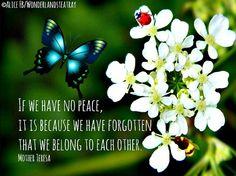 Peace quote via Alice in Wonderland's TeaTray at www.Facebook.com/WonderlandsTeaTray