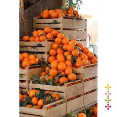 Photo about Stacked wooden crates of fresh ripe oranges on display at a farmers market or store from a freshly harvested agricultural crop. Image of citrus, sweet, food - 57935698 Fruit And Veg, Fruits And Vegetables, Fresh Fruit, Fruit Food, Orange Aesthetic, Exotic Fruit, Orange Crush, Orange Orange, Delicious Fruit