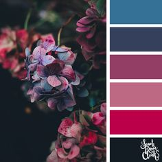 // Explore the beautiful colors of nature with these 25 color palettes inspired by flowers, bouquets and gardens. Find more floral and beautiful color combinations, color schemes and color palettes at sarahrenaeclark.com #colorcombo #weddingpalette #colorpalettes Purple Color Combinations, Burgundy Colour Palette, Purple Color Palettes, Spring Color Palette, Red Color Schemes, Nature Color Palette, Beautiful Color Combinations, Purple Flower Arrangements, Colorful Garden