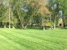 Look at that absolutely gorgeous picnic grove! Wouldn't you love to be grilling out on the charcoal grills and picnic tables (provided for your use) right now?