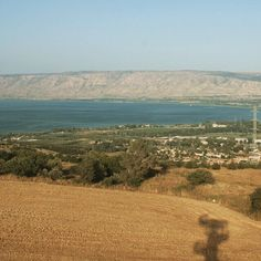 View of the Sea of Galilee from Mitzpeh Kenneret. #alightisrael