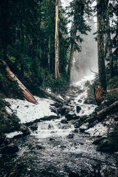 Indian Heaven Wilderness, WA. June 26.