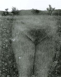Harry Callahan: Eleanor, Aix-en-Provence, 1958. Gelatin silver print.