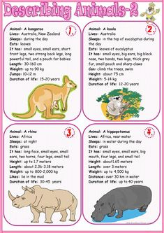 Describing animals 2 worksheet - Free ESL printable worksheets made by teachers animals silly animals animal mashups animal printables majestic animals animals and pets funny hilarious animal English Stories For Kids, English Worksheets For Kids, English Story, English Activities, English Words, English Lessons, Learn English, English Grammar, Animal Worksheets
