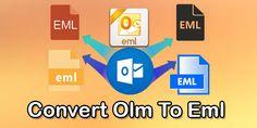 Conversion Tool, Data Integrity, User Interface, Safety, Windows, Marketing, Security Guard, Window, Ramen