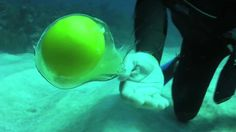 Cracking an egg underwater -- for our next diving expedition