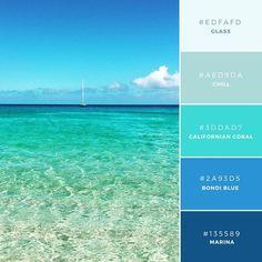 03. Waimea Waters  一般的に青色は、海やテクノロジー関連の業界との相性が良く、異なるコントラストの色合いを組み合わせることでうまくハマります。
