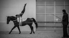 Another great filming last night. Vaulting is most often described as gymnastics and dance on horseback. It's challenging to capture but great to watch ;)