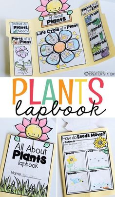 Interactive Lapbooks for the School Year Teachers, when spring is in the air have your learners complete this plant lapbook to learn how plants grow [. Kid Science, 1st Grade Science, Plant Science, Kindergarten Science, Science Classroom, Science Lessons, Teaching Science, Science Activities, Science Projects