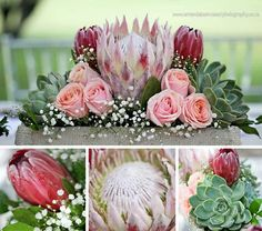 Protea and roses for wedding