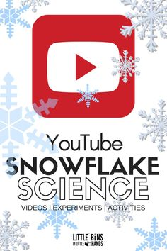 Grow crystal snowflake ornaments with just a few simple ingredients and a handful of pipe cleaners! Crystal snowflakes make great winter science for kids. 1st Grade Science, Kindergarten Science, Teaching Science, Science For Kids, Science Classroom, Science Education, Earth Science, Teaching Ideas, Classroom Ideas