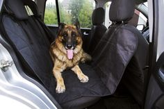 Do you want to take care of your dog while you travelling? Use your car seat cover and be sure that your car is clean and your dog in safe.  Visit our website for more information - http://mt-great.com #dog #pets #lovemydog #dogs #petcarseat #dogcarseat #petcarseatcover #dogcarseatcover #carcover #petcarseatprotector #pet #travel #puppy #yorkshire #yorkshirelove #yorklove #doglover #doglove #doglife #dogslife #lovepuppies #adorable #puppies #mypets #mydog #inspiredbypets #beggintime