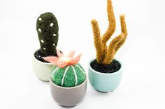 Felted Cactus Garden Set 3 by OnceAgainSam on Etsy
