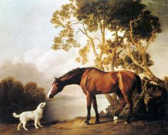 George Stubbs (1724 - 1806)    Bay Horse and White Dog, oil on canvas,    George Stubbs is considered one of the best and most unique artists of the 18th century. His mastery of anatomy and his artistic translations of nature made him one of the most famous artists of animal paintings ever. Some of his most well known work are paintings of dogs, horses, and wild animals. In 1756 he rented a farmhouse in the village of Horkstow, Lincolnshire, and spent 18 months dissecting horses, assisted by…