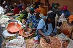 Women processing peanuts for Plumpy'nut production. Photo by Navyn Salem