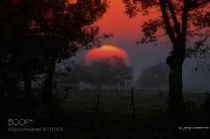 Volveré a encontrarte by xurxo. Please Like http://fb.me/go4photos and Follow @go4fotos Thank You. :-)