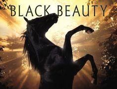 Afbeeldingsresultaat voor black beauty
