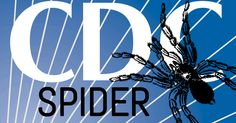 CDC SPIDER letter written by at least 12 CDC scientists details systemic corruption and demands accountability and a good house cleaning!