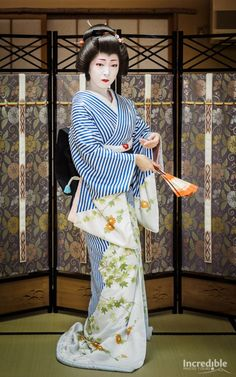 2016 Classic Japan Cherry Blossom Tour Report – Part 2 Geisha Japan, Geisha Art, Kyoto Japan, Okinawa Japan, Traditional Japanese Kimono, Traditional Dresses, Japanese Beauty, Japanese Fashion, Kimono Design