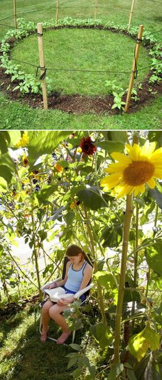Wachsen Sie ein Sonnenblumenhaus für die Kinder zum Spielen. | 32 Cheap And Easy Backyard Ideas That Are Borderline Genius
