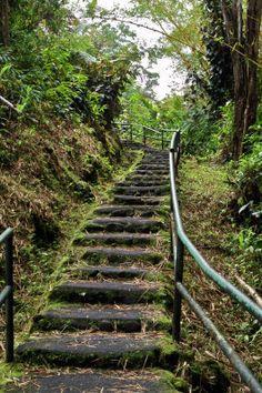 Stairway on the hike to Akaka Falls, The Big Island, Hawaii. Aloha Hawaii, Hawaii Life, Hawaii Vacation, Hawaii Travel, Vacation Trips, Vacation Spots, Vacations, Places To Travel, Places To See