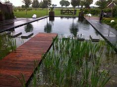 Portfolio zwemvijvers - gardenSwimm - Heerde